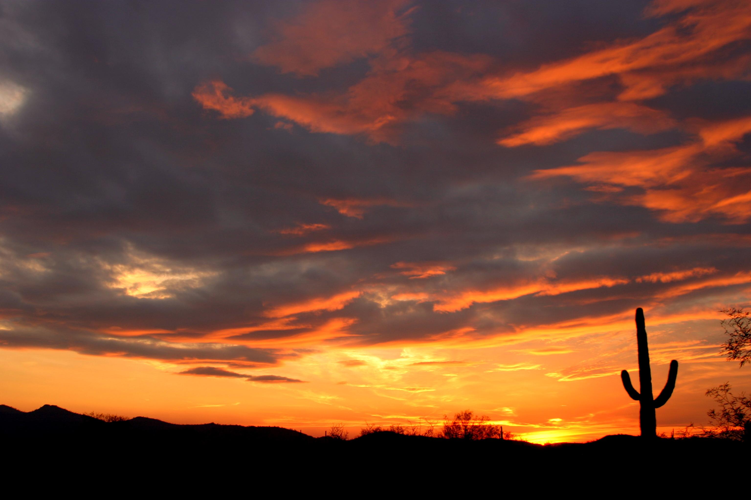 Desert Sunset | Cweenmj's Photos